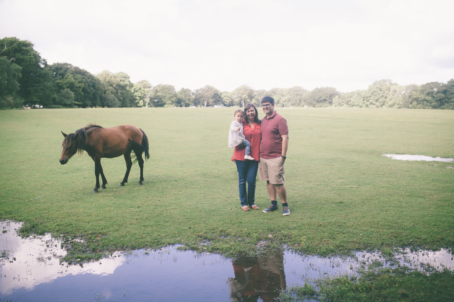 New Forest Family Photography